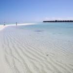 Diva Maldives #13 また、会いましょう!モルディブ