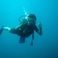 Diva Maldives #11 ダイビング中にジンベイザメと奇跡の遭遇
