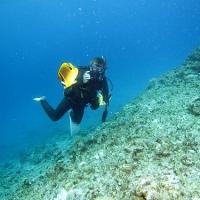 初潜りは沖縄で vol.3