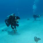 台風の沖縄でウミウシダイビング 3本目
