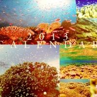 みんカレ2013に写真が採用されました