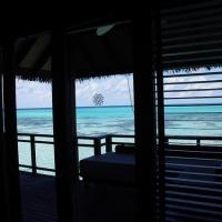 Diva Maldives #8 ジンベイザメとシュノーケリング