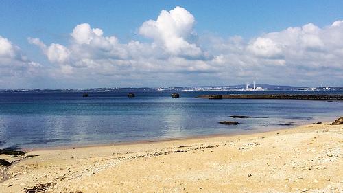 春だ!沖縄だ!ウミウシだ! #3 レッドビーチ
