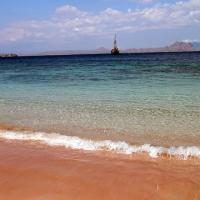 コモド クルーズ #14 ピンクビーチ上陸