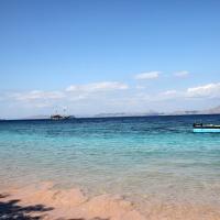 世界遺産・コモドの海 #17 ピンクビーチ上陸