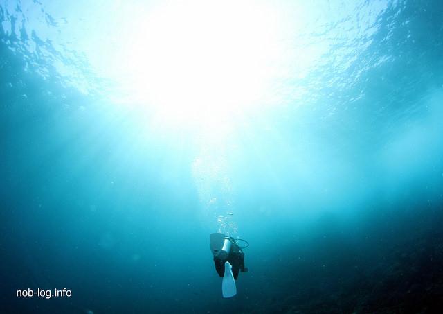 世界遺産・コモドの海 #15 なにもいなかった MANTA ALLEY