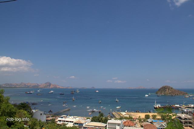世界遺産・コモドの海 #27 トラブルだらけの最終日