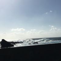 超大型台風の接近で強風波浪警報が出ている八丈島で潜ってきた 3本目
