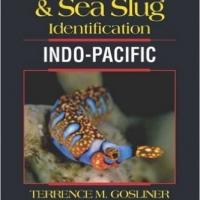 最新のウミウシ図鑑「Nudbranch & Sea Slug Identification Indo-Pacific」を買っちゃった