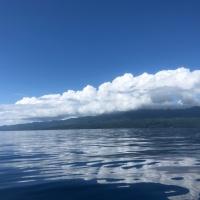 Bula Fiji #3 ベタ凪